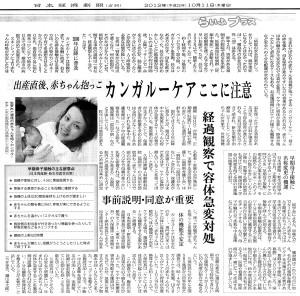 カンガルーケア ここに注意 - 日本経済新聞